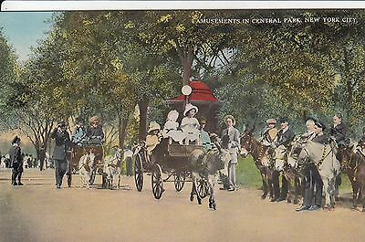 Central Park Amusements w children riding in Goat-drawn carriages NYC c1910