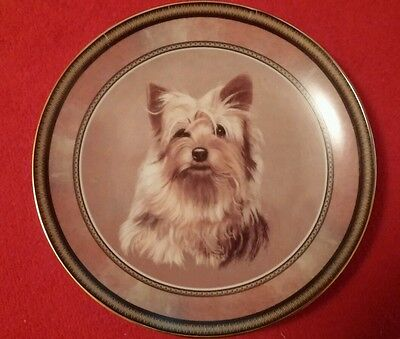 China Collector Plate with Yorkshire Terrier DOG Cute Dogs Collection Yorkie