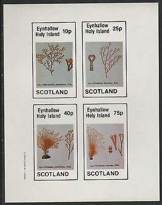 GB Locals - Eynhallow (1096) 1982 SEA WEED  imperf sheetlet unmounted mint