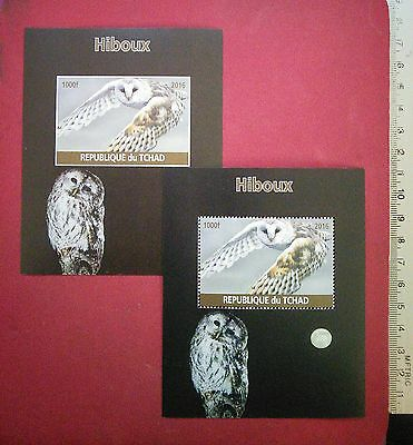 the OWL Hiboux 2016 CHAD Collectable Wild Birds stamps newMNH GIFT