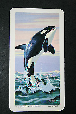 Killer Whale     Illustrated Card   VGC