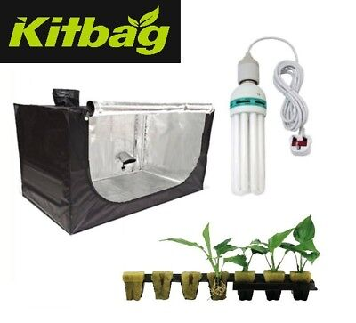 50x50x100 Hydroponics Propagation Grow Tent Kit Cuttings cfl Grow Light seedling