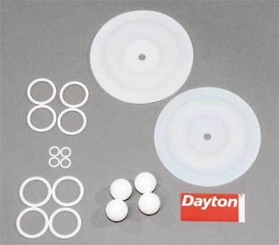 Pump Repair Kit,Fluid DAYTON 6PY72