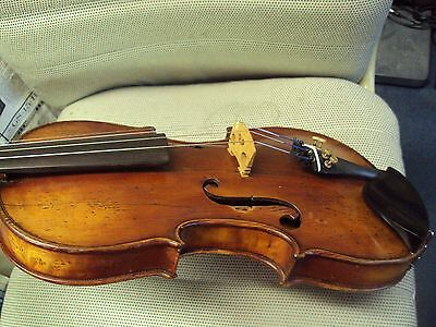 Full size  Vinaccia Labled Italian Contemporary Violin  over 100 years old