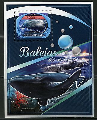 Guinea Bissau  2017 Whales   Of The World  Souvenir Sheet Mint