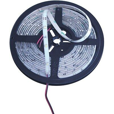 White Label 5M LED Strip 150pcs 12V Warm White