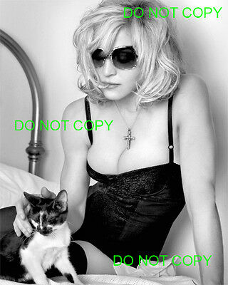 MADONNA - 8x10 Photo - PLAYING WITH HER PUSSYCAT