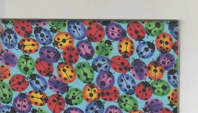 Lady Bugs Checkbook Cover Fabric New Colorful