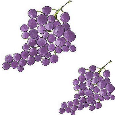 NeW! HanDPainTeD GRaPeS ShaBby WaTerSLiDe DeCALs