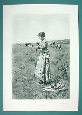 SHEPHERDESS Lonely Meadow Cows Wooden Shoes - 115+ Years Old Antique Print