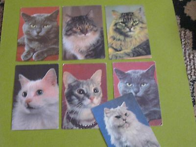 lot of 7 cat Russian pocket calendars 1990 (free ship $20 min US only)