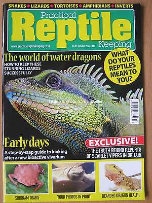 Practical Reptile October 2016 Surinam Toads Bearded Dragons Asian Water Dragon