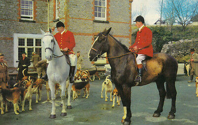 Leaving For The Hunt Fox Hunting 1970s Postcard