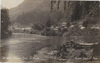 Nz Waihou River Te Aroha Real Photo Postcard