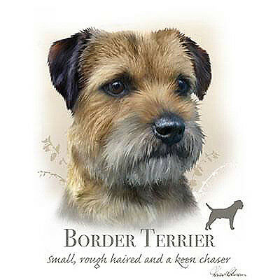 BORDER TERRIER fabric panel & paws fabric panel howard robinson