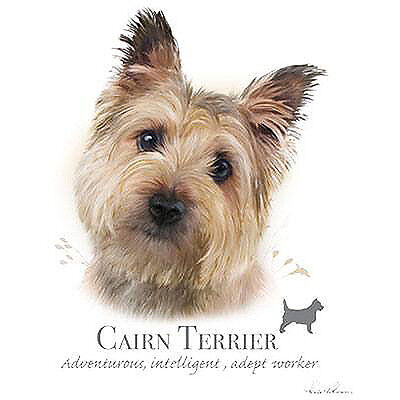 CAIRN TERRIER fabric panel & paws fabric panel howard robinson
