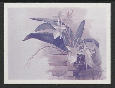 Guyana (1655) - 1985 Orchids IMPERF TWO-COLOUR PROOF  unmounted mint