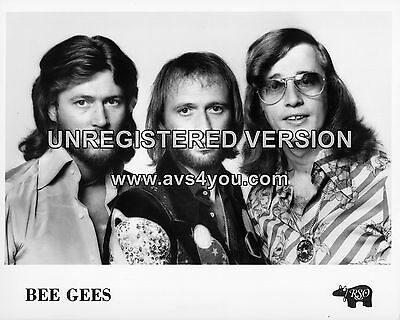 "Bee Gees 10"" x 8"" Photograph no 5"