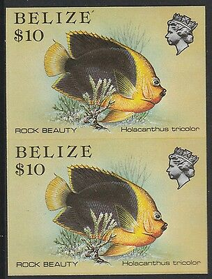 Belize (1744) - 1984 Marine Life $10 IMPERF PAIR unmounted mint