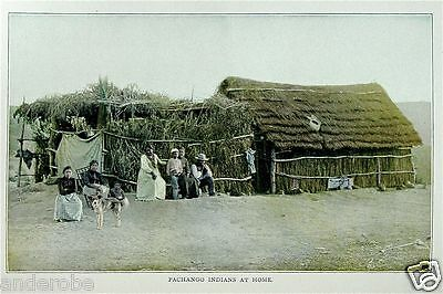 Stoddard's OLD AMERICAN WEST 100's of 1800's GREAT Photos of YESTERYEAR! L@@K!