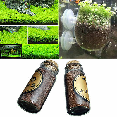 Aquarium Plant Seed Aquatic Double Leaf Water Plants Seeds Fish Tank Decor