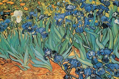 "Vincent Van Gogh art poster 24x36"" Garden of Irisis"