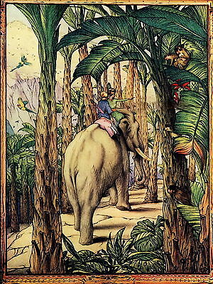 Vintage Maurice Edward Detmold Art Print Animal Elephant Safari Jungle Monkeys