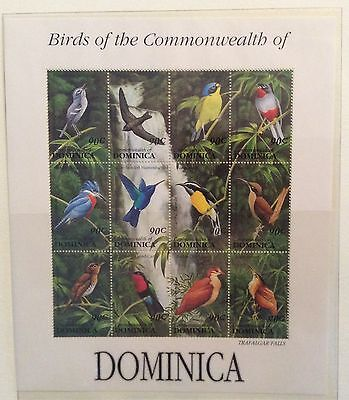 Dominica mid 1990's Unmounted Mint. Birds. Stamps, Minisheet 3 images Good CV.