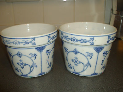 Two Planters / Blue And White Pattern