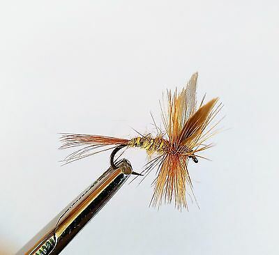 6 Gold Ribbed Hares Ear Trout Buzzers Trout Lures Dry Fly Fishing Trout Flies