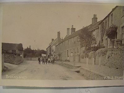 Real Photographic Postcard Of Buckland  H And J Frome