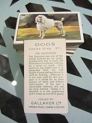 """GALLAHER'S"""" DOGS A SERIES1936"""" FULL SET [s]"""