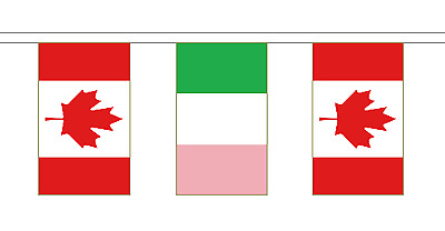 Newfoundland & Canada Polyester Friendship Flag Bunting - 20m with 56 Flags