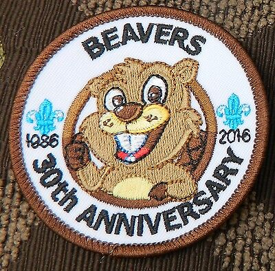 New Scout Fancy Beaver 30Th Year 2016 Birthday Badge  Look !!!
