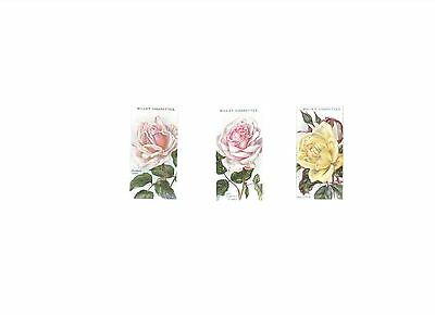 Roses - 2nd series - A part set of cards (3/50) issued by Wills in 1914