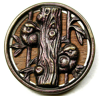 Lg Antique Woodback Button 2 Birds Peering Around the Tree Trunk Cute! 1 & 1/4""