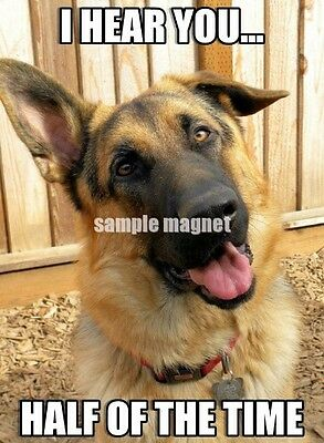 "German Shepherd Refrigerator Magnet  3.75"" x 2.75"" Hear You Half the Time"