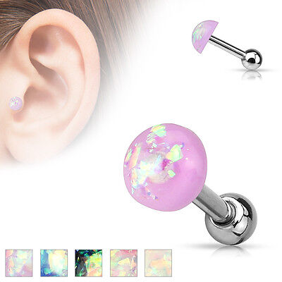 5pcs Opal Glitter Dome Top Tragus Stud Rings Wholesale Lot Body Jewelry