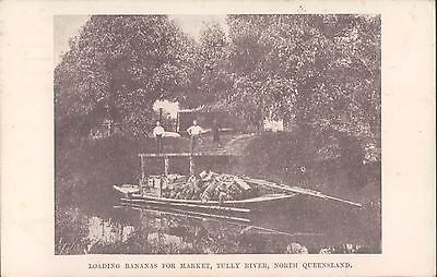 North QUEENSLAND Loading bananas for market Tully river 1908 PC
