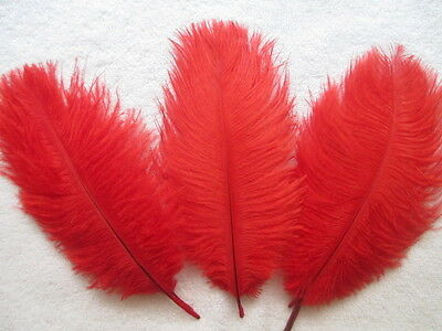 Free shipping 10 pcs Beautiful red ostrich feather 6-8 inches 15-20 cm