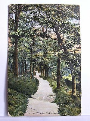 Postcard - Rothesay - In The Woods - Isle Of Bute Scotland - 1904