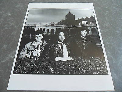 THE ICICLE WORKS - Original Promotional / Press / Advertising Photograph