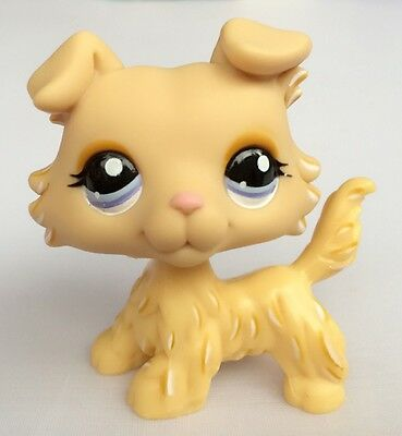 Littlest Pet Shop Rare Yellow Collie Dog Puppy Blue Eyes LPS Toy #1194