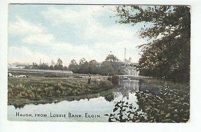 Haugh Mansion House From Lossie Bank Elgin Moray 16 Aug 1906 Ness Series No 0001