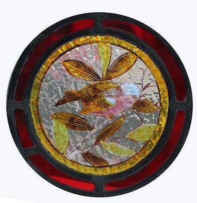 Beautiful Victorian Painted Bird Chaffinch In Foliage Stained Glass Roundel