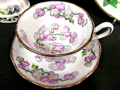 Royal Albert Tea Cup And Saucer  May Blossom Pattern Painted Teacup