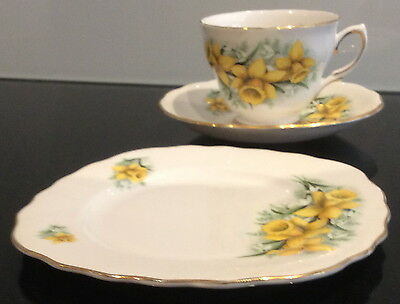 Vintage Teacup Saucer & Plate Colclough English Bone China Numbered