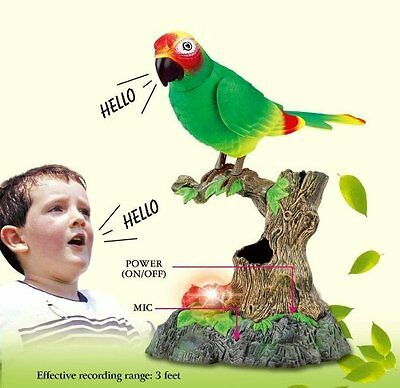 Chatty Patty Electronic Talking Repeating Parrot Parakeet Bird Pet As Seen on TV
