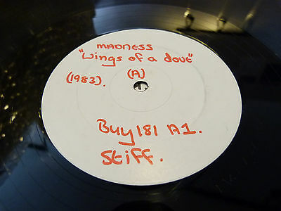 """Madness - Wings Of A Dove:: 12"""" White Label Test Press: 1983:stiff Buy 181: Ex-"""