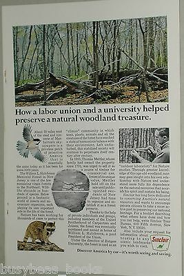 1967 Sinclair Petroleum advert., William Hutcheson Memorial Forest, New Jersey